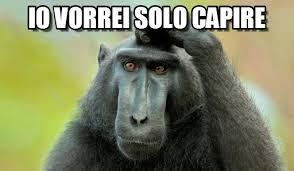 ELEFANTI ED ALTRI ANIMALI