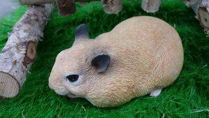 rabbit-2749273__340